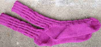 23a Crocodylia Socks