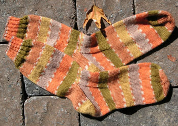 055_basic_socks
