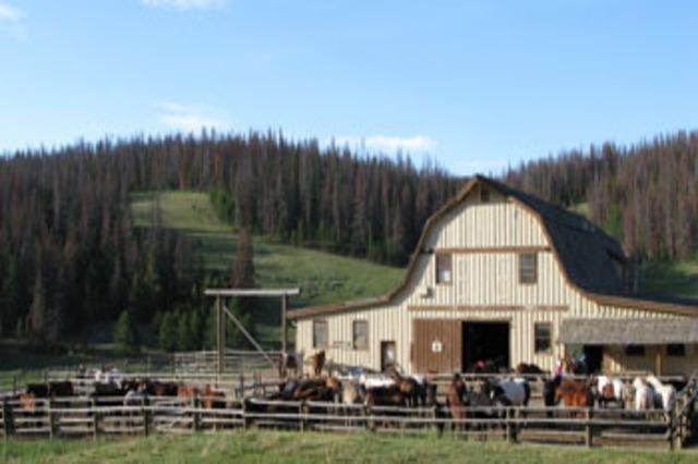 2817_barn_horses001