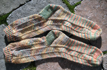 Jaywalker_socks
