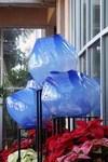 714_blue_glass_poinsettias