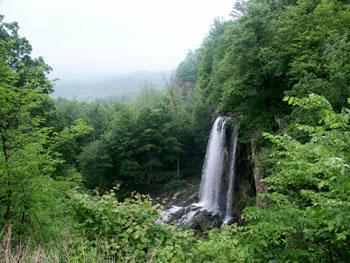 spring_falls